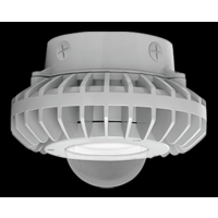 RAB 26W Cool LED Ceiling w/Clear Globe, 51000K, Gray