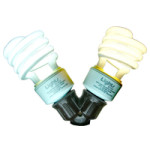 Mini-Twistee CFL