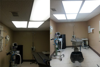 Veterinary office before and after Vi-Tek 93 Plus upgrade