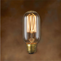 Clear Nostalgic Victorian Squirrel Cage Filament 40 Watt